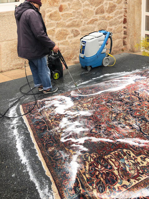 rug-cleaning-process-vertical-image