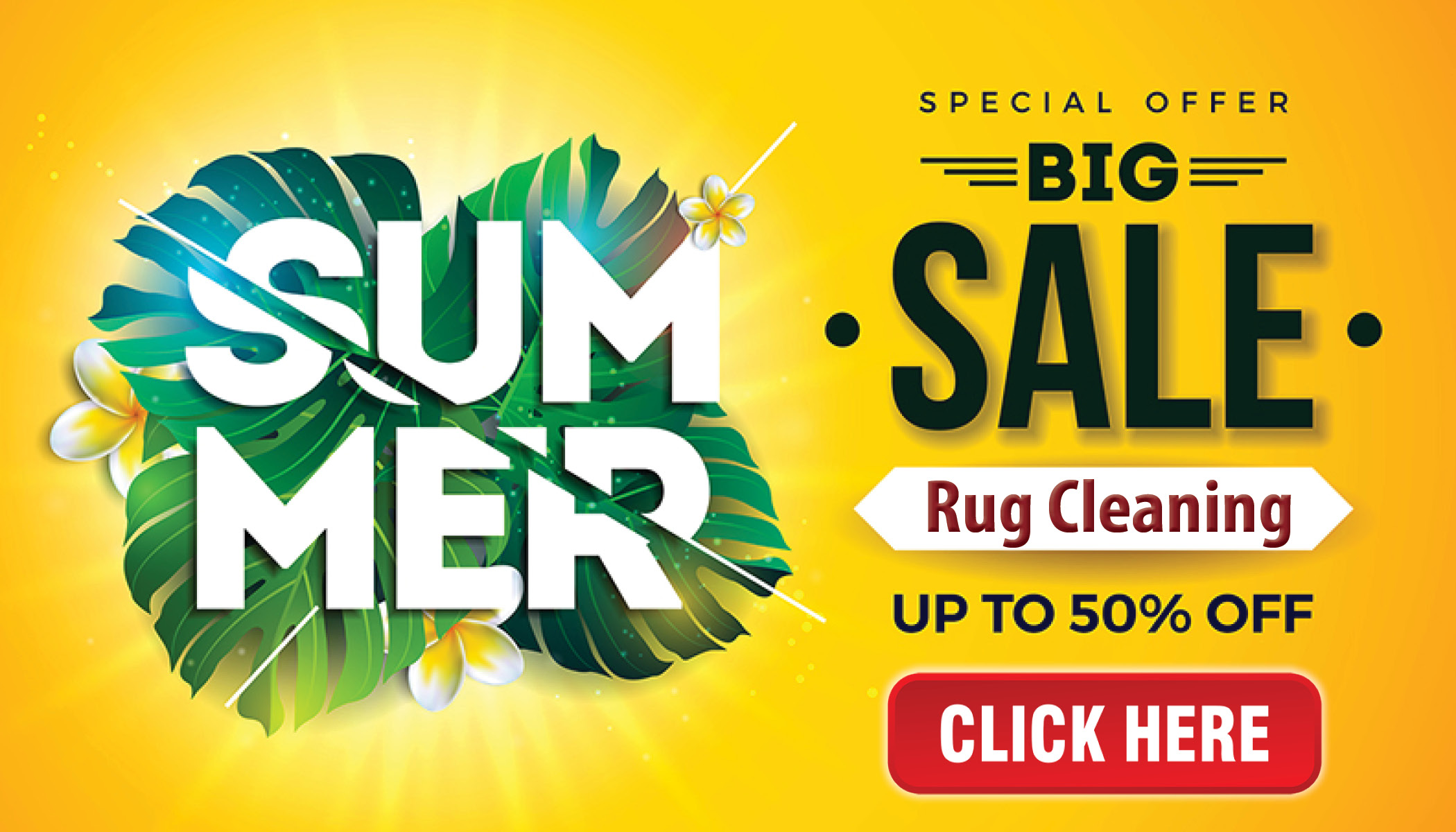 rug-cleaning-summer-special